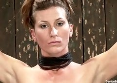 BDSM porn video featuring Ariel X, Madison Young and Isis Love