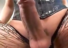 Compilation Shemale Porn